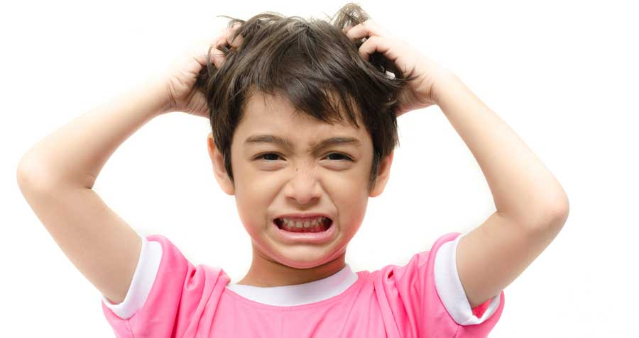 Advice from Family Doctors: Head Lice