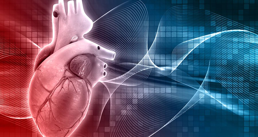How to Modify Your Risk for Heart Disease